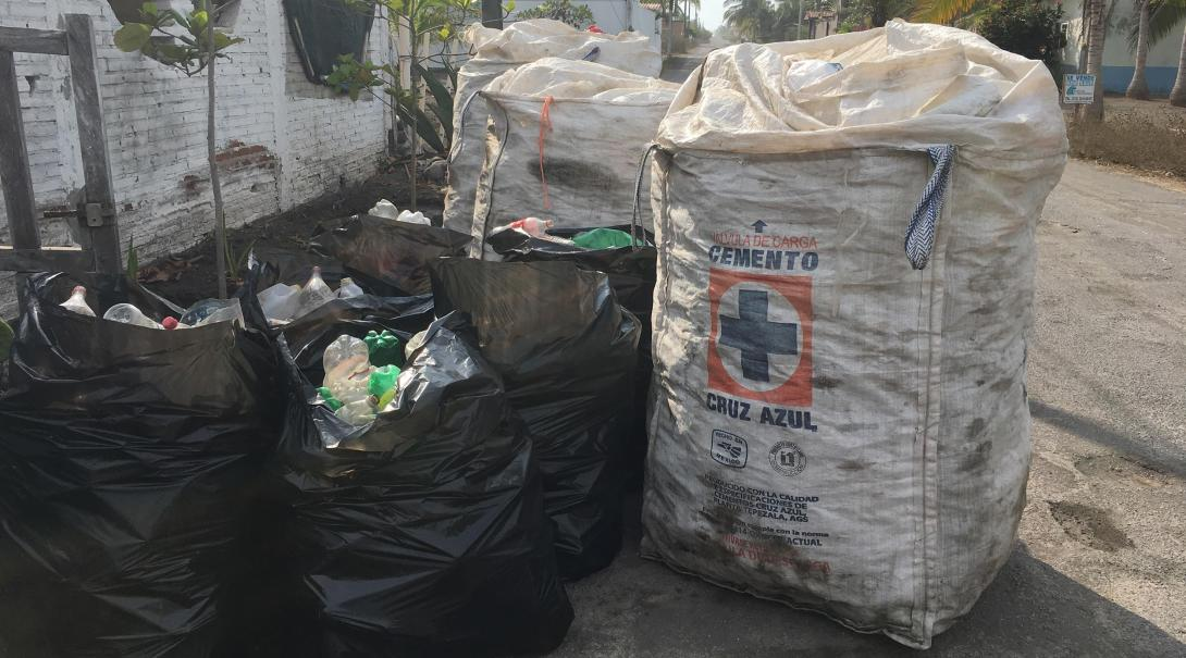Plastic bottles collected by Projects Abroad Conservation volunteers in Mexico.